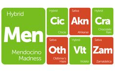 New Strains Alert:… https://www.leafly.com/news/strains-products/new-strains-alert-chocolate-rain-zamaldelica-oldtimers-haze-and-more