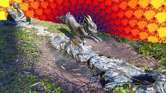 Alice down a rabbit-hole by public-art.uk