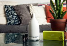 With help from Saje Natural Wellness, we've got home fragrance tips in time for the hosting season. We're talking diffusers, essential oils and nebulizers with Saje. Diffusers, Essential Oils, Fragrance, Perfume, Wellness, Throw Pillows, Natural, Tips, House