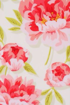 Cute peonies wallpaper