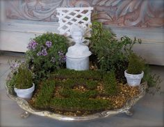 Enjoy Your own formal garden, without the acreage, with a fun DIY tabletop garden complete with mini statue and hedge maze. With small scale plants and budget f…