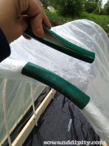 recycled watering hose to secure plastic...I would use it under the plastic to stop the plastic ripping