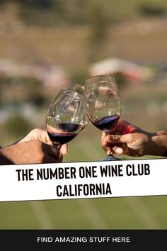 Wine Ambassador is hands down the fastest growing wine club monthly in the world. Enjoy a new selection of hand-selected labels every month. Learn how to get them for free. #wineclub #winelovers #NapaValleyWine #napavalleywines #wineclublife #wineclubs Merlot Red Wine, Red Blend Wine, Red Wine Sangria, Dry Red Wine, Semi Sweet Red Wine, Sweet Red Wines, Red Wine Benefits, Types Of Red Wine, Wine Club Monthly