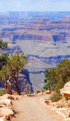 Grand Canyon - A great stop on a honeymoon road trip through the West Coast of the USA!