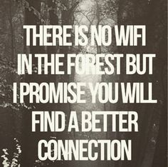 """There is no wifi in the forest, but I promise you will find a better connection."""