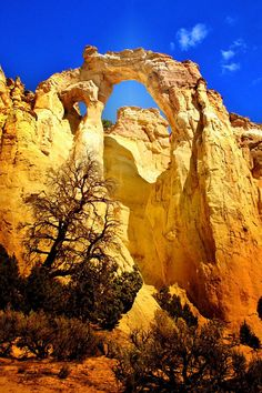 Grosvenor Arch, Grand Staircase-Escalante National Monument; photo by Ellen Lacey