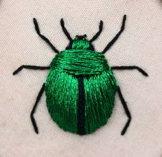 Broderie, insecte