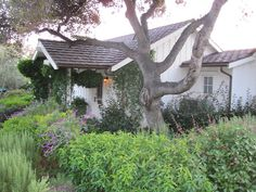 The Old Cottage at San Ysidro Ranch.