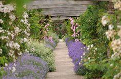 Hestercombe Gardens designed by Sir Edwin Lutyens and Gertrude Jekyll.