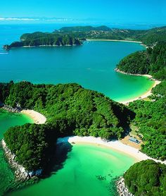 Abel Tasman National Park - New Zealand, went in boat to all these coves, then swimming with seals and walked the last two hours out. So beautiful | @VTJunkies