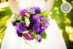 The bridal bouquet will be a clutch of dark purple hydrangeas, dark purple lisianthus, fuchsia garden roses, green hypericum berries, fuchsia stock flowers, and green scented geranium wrapped in ivory ribbon.