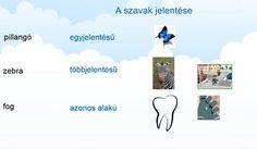 A szavak és a betűk - Nyelvtan 4. osztály VIDEÓ - Kalauzoló - Online tanulás