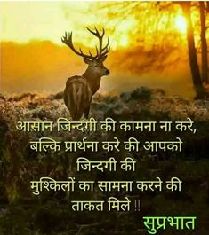 Good Morning Life Quotes, Good Morning Wishes, Good Morning Images, Beautiful Good Night Images, Beautiful Morning, Life Lesson Quotes, Life Lessons, Hindi Quotes, Quotations