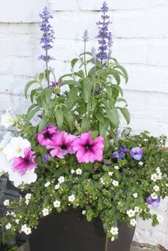 Container Garden from Two Maids a Milking Blog.