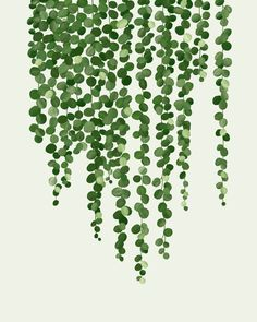 Greenery Digital Print, Botanical Art, Vines, Home Decor, Boho Modern Farmhouse Wall Art, Instant Download