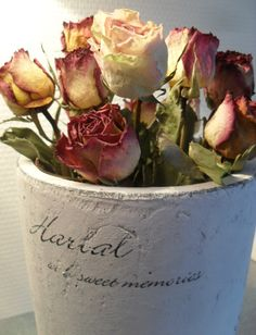 Raindrops and Roses Romantic Flowers, Love Flowers, Dried Flowers, Beautiful Flowers, Pretty Roses, Beautiful Things, Drying Roses, Raindrops And Roses, Autumn Rose