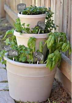 Stacked pots for herb garden Herb Pots, Clay Pots, Stacked Flower Pots, Stacked Pots, Culture D'herbes, Diy Herb Garden, Herb Gardening, Herbs Garden, Barbell