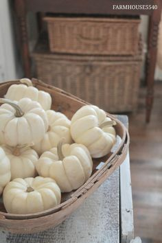Basket full of white pumpkins. Thanksgiving Decorations, Seasonal Decor, Holiday Decor, Thanksgiving Games, Holiday Parties, Fall Home Decor, Autumn Home, Soft Autumn, Autumn Nature