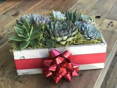 Your place to buy and sell all things handmade Succulent Arrangements, Succulents, Christmas Gifts, Christmas Decorations, Wooden Planters, Drought Tolerant, Xmas Ideas, Rustic Farmhouse, Anniversary Gifts