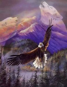 Mark Jackson uploaded this image to 'Eagles'. See the album on Photobucket. Eagle Images, Eagle Pictures, Bird Pictures, The Eagles, Bald Eagles, Native Art, Native American Art, Eagle Drawing, Eagle Painting