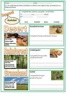 Understanding habitats and adaptation for KS1