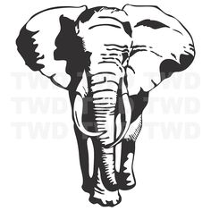 Elephant Vinyl Wall Decal _ Large Elephant Stickers for Walls _ Beauautiful Animal Bedroom Wall Decor | Trendy Wall Designs