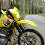Dr 650 #dr650 Dr 650, Instagram, Motorcycle, Vehicles, Motorbikes, Motorcycles, Car, Choppers, Vehicle