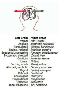 Left and right brain functions and tendencies