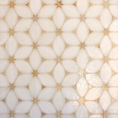 Sand Dollar is the perfect way to bring colour into your home. It is a classy and playful pattern. In a small scale Art Glass Mosaic, it creates an unforgettable wall tile. In stone, it brightens...