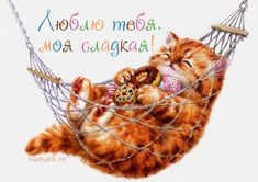 Teddy Bear, Pets, Pet Lovers, Teddy Bears, Animals And Pets