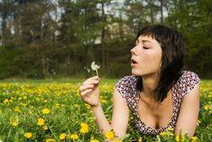 Plantele-miraculoase care ne detoxifică  trupul și mintea Drop Earrings, Plant, Drop Earring