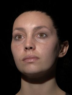 The Wikihuman Project - work by USC Institute for Creative Technologies and the Digital Human League to advance the study of digital humans. Models, shaders, and maps available for download.