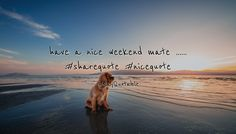 Quote: Have A Nice Weekend Mate .