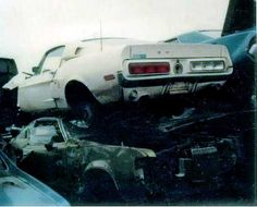 1968 Ford Mustang fastback Shelby in a junkyard...