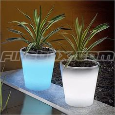 """Paint flower pots with Rustoleum's """"Glow in the Dark"""" p… Glowing Flower Pots. Paint flower pots with Rustoleum's """"Glow in the Dark"""" paint. Absorbs sunlight by day & glows at night. Great landscape and gardening idea. Unique Garden, Diy Garden, Dream Garden, Home And Garden, Glow Garden, Night Garden, Garden Paths, Glowing Flowers, Do It Yourself Baby"""