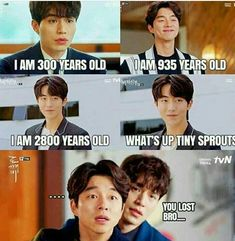 The Bride of the Water God – I saw this and OMG it literally killed me. I can totally imagine this dialogue happening between them exactly with their voices and their attitudes Korean Drama Funny, Korean Drama Quotes, Korean Drama Movies, Korean Dramas, Kdrama Memes, Funny Kpop Memes, Gong Yoo, Ver Drama, Goblin Korean Drama