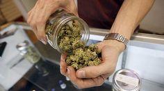 Inició venta de cannabis en farmacias de Uruguay