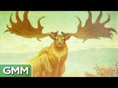 7 Extinct Animals We Wish Were Brought Back to Life - YouTube