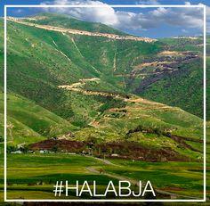 @rebeen designer #nature #halabja Mountains, Nature, Travel, Design, Naturaleza, Viajes, Destinations, Traveling, Bergen