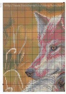 семья волков 1