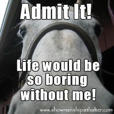 Life would be so boring without horses...