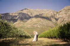 Stellenbosch-South Africa