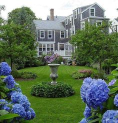 Nantucket home ♡ Nantucket Home, Nantucket Style, Nantucket Island, Nantucket Massachusetts, Hydrangea Season, Beautiful Gardens, Beautiful Homes, Beach Cottages, My Dream Home