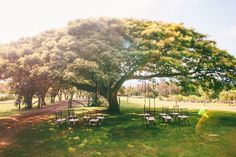 Bring Your Own Alcohol Wedding Venues {BYO Insider Tips}