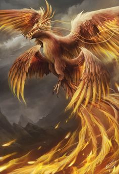 Phoenix Artwork, Phoenix Wallpaper, Dragon Artwork, Bird Artwork, Mythical Creatures Art, Mythological Creatures, Fantasy Creatures, Dark Fantasy Art, Fantasy Artwork