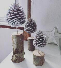 Little Fircone Trees!