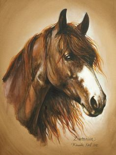 """Busznica"" watercolor by Kamia Karst 2000 www. Deer Pictures, Pictures To Paint, Majestic Horse, Beautiful Horses, Horse Drawings, Animal Drawings, Watercolor Horse, Horse Artwork, China Painting"