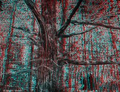 PARTICLES - Dead tree (3D - anaglyph) 3d Pictures, View Photos, Red And Blue, City Photo, Photography, Photograph, Fotografie, Photoshoot, Fotografia