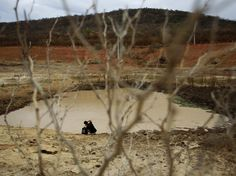 Not a Drop to Drink: The Global Water Crisis