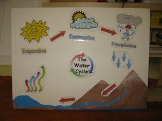 Water cycle activity for kids using siple ways! This activity is appropiate for any lower grades. Water Cycle Craft, Water Cycle Project, Water Cycle Activities, Science Activities, Activities For Kids, Science Projects For Kids, Science For Kids, School Projects, Science Nature